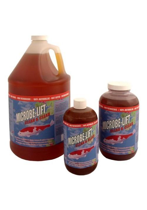 Bacteries Démarrage et entretien de filtration biologique Clean & clear-