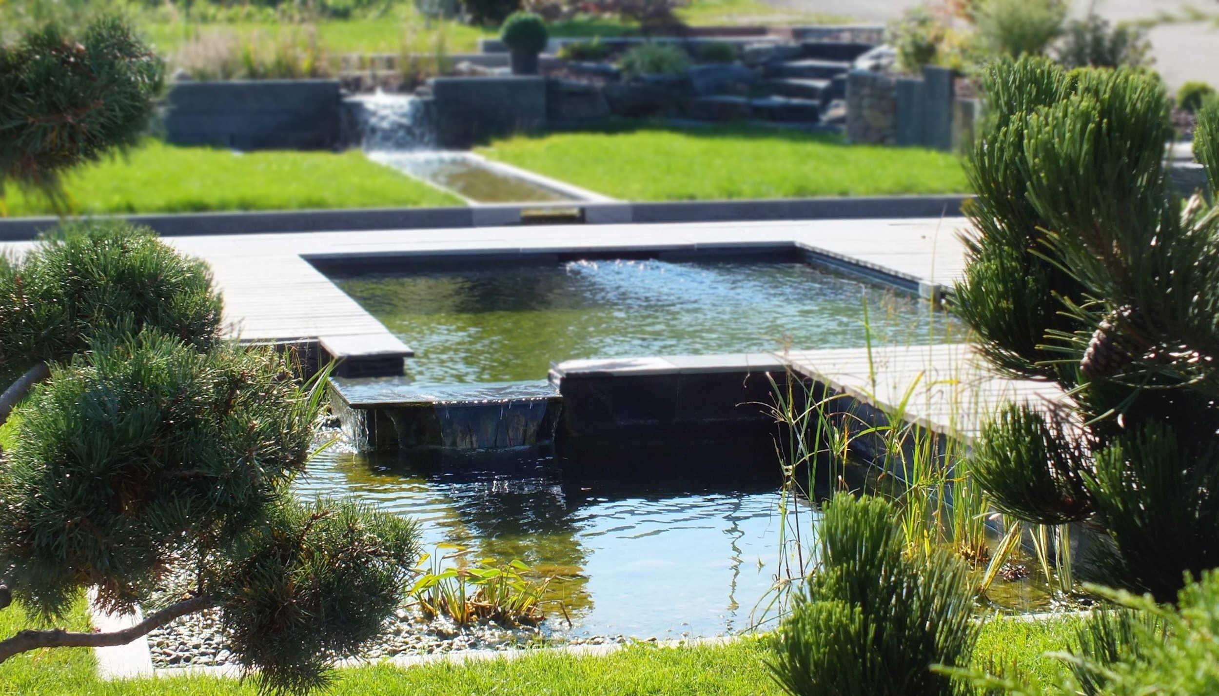 Matériel pour décorer sa piscine naturelle et son bassin